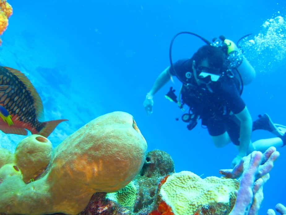 What You Need To Know About Scuba Gear